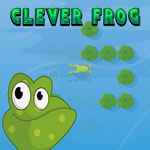 Play Clever Frog