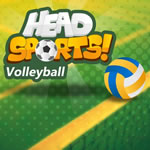 Play Head Sports Volleyball